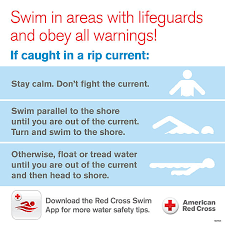 Rip Charts App How To Look Out For Rip Currents And What To Do When Caught