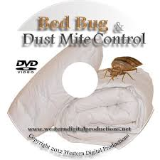 diy bed bug dust mite control how to get rid of bed