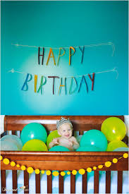 Pin by Marisa Wade on family traditions   Birthday photos, Baby first  birthday, 1st birthday pictures