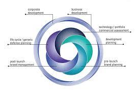 Design Science Consulting Inc Biopharma Consultants