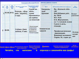 Лекция Как заполнять дневник отчет презентация онлайн 5