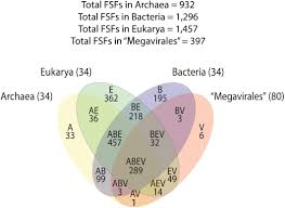 Bacteria And Viruses Venn Diagram Frontiers Ancestrality And Mosaicism Of Giant Viruses