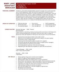Resume Templates For Extraordinary Resume Example Profile Adorable Sample Restaurant Template Company