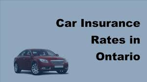2017 motor insurance rates why ontaria has highest motor insurance premium rates