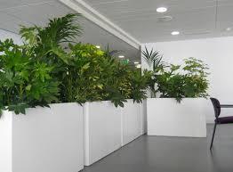 Asda Indoor Plant Pots