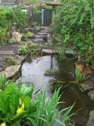 Small Picture David Shaw Creative Garden Design Home