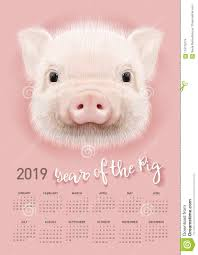 Chinese Calendar Template Pig Calendar For 2019 Vector Editable Template With Concept Symbol