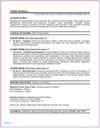 Registered Nurse Resume Objective Statement Examples