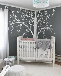 Twin Nursery Ideas