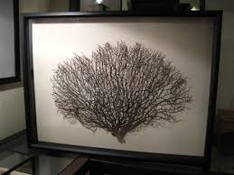 on huge framed wall art with large framed black sea fan sea fan wall art