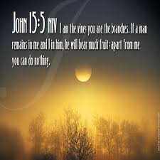 Beautiful Bible Quotes About Death Best of Beautiful 24 Best Bible Verses Images On Best Quotes Collection
