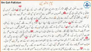 essay parents day in urdu ilm gah differentiate between source and object program
