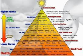 Food Vibrational Frequency Chart Making A Difference Today 9 Easy Food Hacks That Will Raise