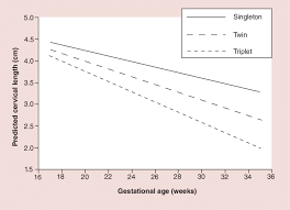Cervical Length Chart In Twin Pregnancy By Weeks Predicted Cervical Length Change Among Singleton Twin And
