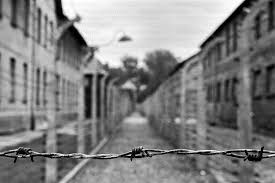barbed wire fence concentration camp. Contemporary Concentration Image Result For Barbed Wire Fence Concentration Camp To Barbed Wire Fence Concentration Camp W