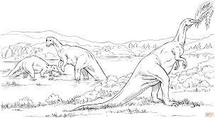 Coloriage Camptosaure Dinosaure Herbivore Coloriages