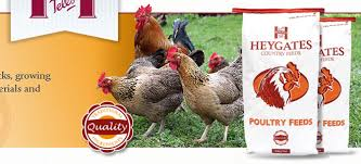 chicken feed brands. Interesting Brands With Chicken Feed Brands