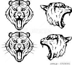 虎のエンブレムのイラスト素材 37636361 Pixta