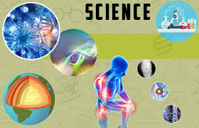 science assignment help science project help essaycorp