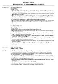Sales Coordinator Job Description Resume