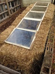 cold frame garden. Perfect Frame Straw Bale Cold Frames Are Easy Inexpensive Portable And Biodegradable Inside Cold Frame Garden