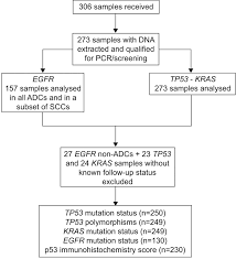 Prognostic Value Of Tp53 Kras And Egfr Mutations In