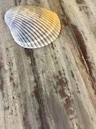 diy rustic furniture. DIY Rustic Beach Furniture Finish Country Chic Paint Tutorial - #DIY #furniturepaint #chalkpaint Diy E