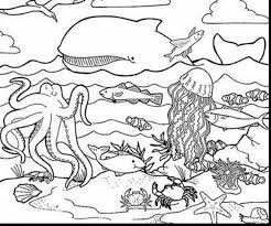 Small Picture remarkable coloring page sea ocean animals with underwater