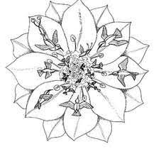 Small Picture ANIMAL mandalas Coloring pages Printable Coloring Pages