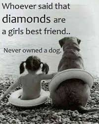 Dog Quotes Love And Loyalty Beauteous 48 Quotes That Prove Dogs Are TRULY WoMan's Best Friend YourTango