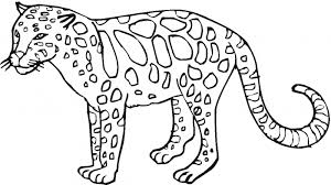 Excellent Ideas Wild Animal Coloring Pages 35 Animals Printable
