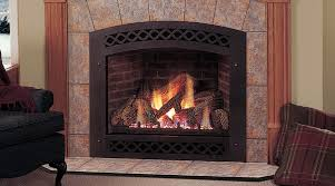 gas fireplace gas fireplace logs with er tasty ideas window of
