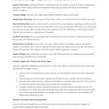 Essay Summary Examples College Application Essay Template Personal Examples Writing