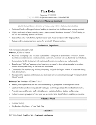 Template Sample Resume Nursing Assistant Entry Level Copy Cna