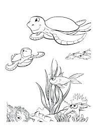 Ocean Coloring Sheets For Preschoolers Pages Kindergarten Preschool