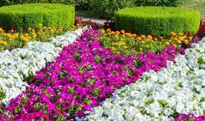 16 fantastic flower garden ideas you ll