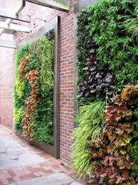 gallery outdoor living wall featuring: view in gallery living walls filled with perennials