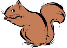 Small Picture Squirrel Drawing Clipart Panda Free Clipart Images