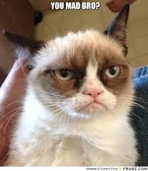 YOU MAD BRO?... - grumpy cat Meme Generator Captionator via Relatably.com