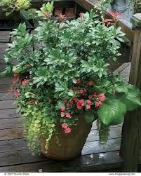 Container Gardens For Winter  Triangle Gardener MagazineContainer Garden Ideas For Winter