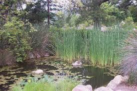 the santa barbara botanic garden is located at 1212 mission canyon road in santa barbara see map