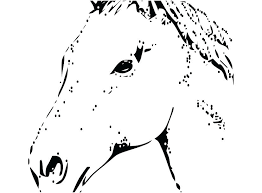 Horse Head Coloring Page Unicorn Head Coloring Pages Free Horse Head