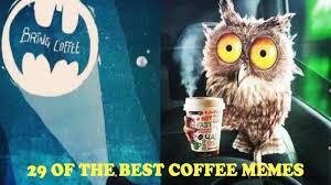 Half the day i wonder. 29 Funny Coffee Memes To Keep You Laughing Craft Coffee Guru