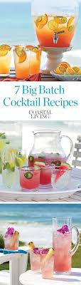 Best 25 Adult Punch Recipes Ideas On Pinterest  Non Alcoholic Party Cocktails For A Crowd