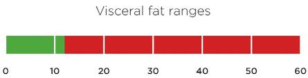 Visceral Fat Range Risks And Ways To Reduce Visceral Fat