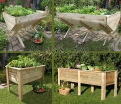 Kitchen Garden Trough Details About Large Garden Vegetable Veg Trough Wooden Timber