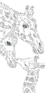 Printable Giraffe Coloring Pages Giraffe Coloring Pages Printable