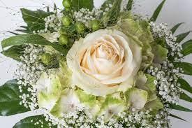 Scarica questa immagine gratuita di fiori piccoli bianchi dalla vasta libreria di pixabay di immagini e video di pubblico dominio. Fiori Per Battesimo 5 Consigli Su Composizioni E Mazzi Di Fiori Da Regalare