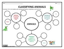 Difference Between Amphibians And Reptiles Venn Diagram Classifying Animals Reptiles Amphibians And Mammals