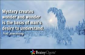 Image result for wonder quotes